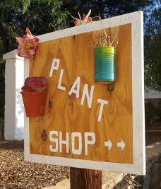 Green House Plant shop (3)-H900