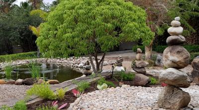 Koi Pond area-crop-H900